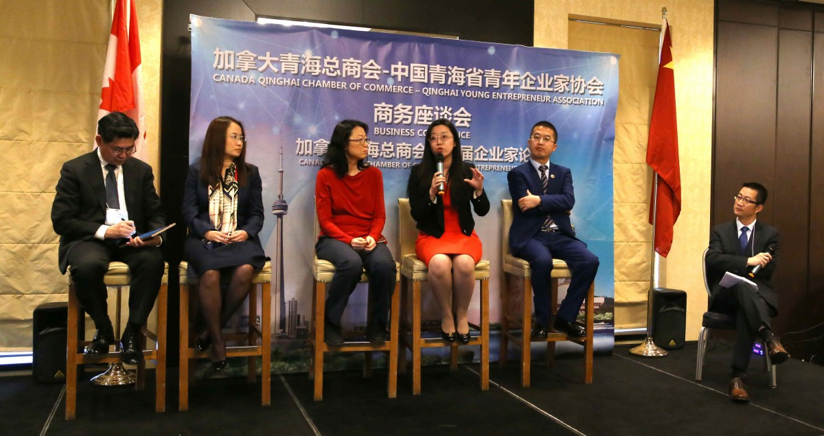 20 中加两地专家及企业家谈中加企业合作与投资