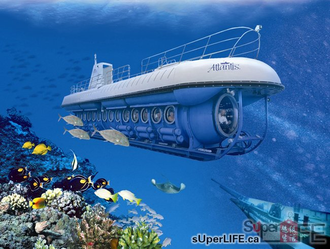 13、卑诗省制造许多潜水艇。 卑诗省的Atlantis Submarines所拥有的潜水艇比很多国家都要多,公司成立于1986年。他们制造的48人和64人潜水艇已经带着1,000万游客参观过太平洋和加勒比海。