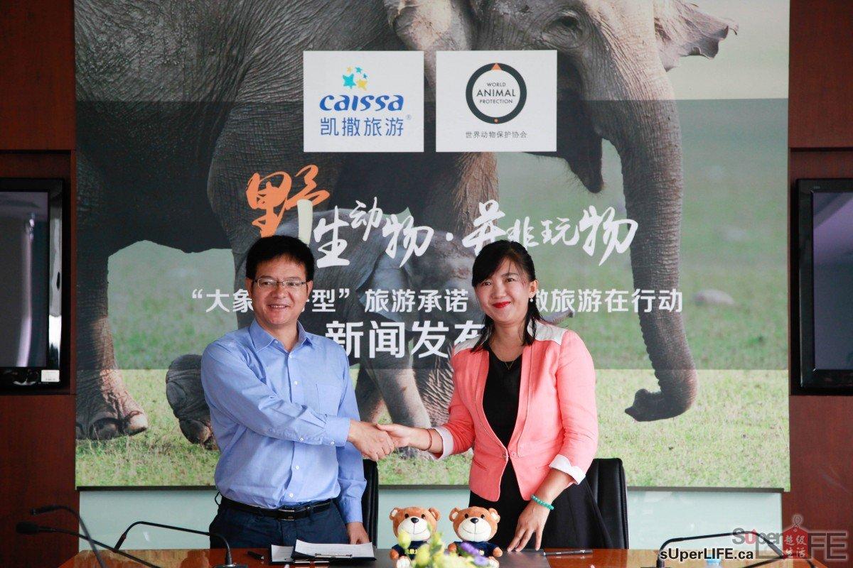 World Animal Protection_Elephant friendly
