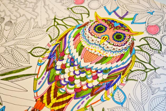 Colouring Book Ideas Indigo