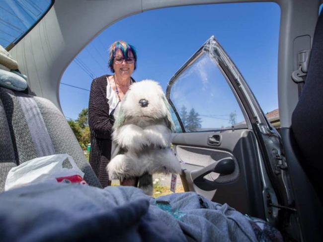 哭笑不得!夫妇砸车窗救狗 抱出来一看瞬