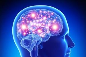 5种促进大脑健康的最佳食物