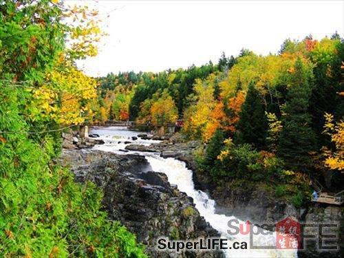 含一块枫糖加拿大深秋去看满山红叶