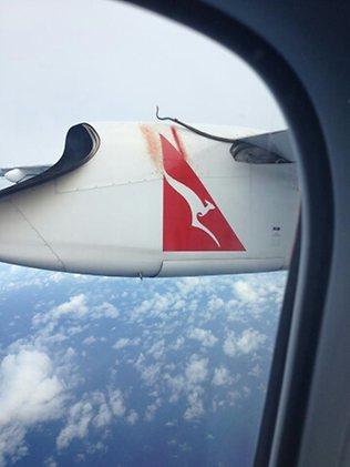 澳洲:高空中的飞机机翼惊现蟒蛇 猛拍机身血迹斑斑(组图)