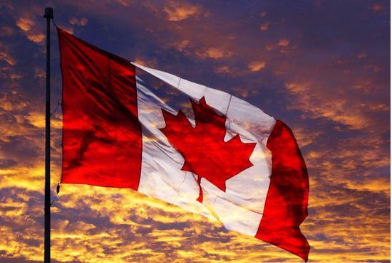 加拿大拯救了全球市场 加元带动世界一起狂涨