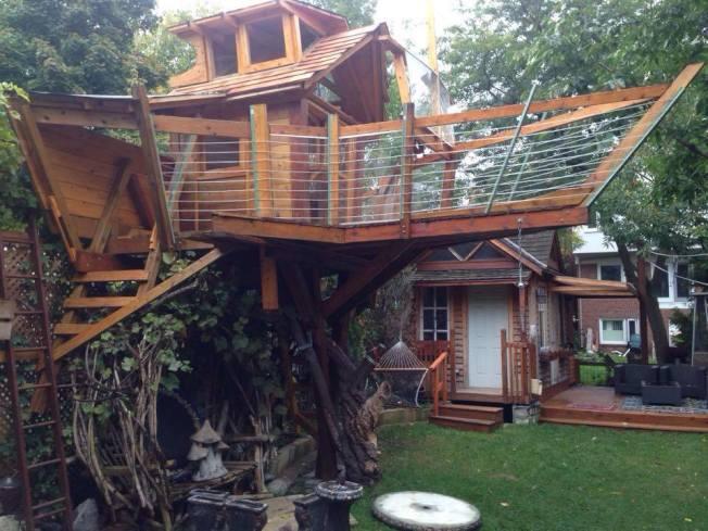 为儿子开心 其父花费3万在后院建树屋却挨罚