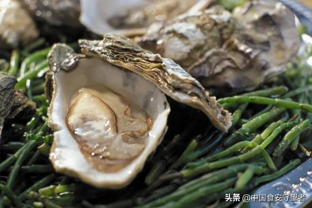 牡蛎营养价值