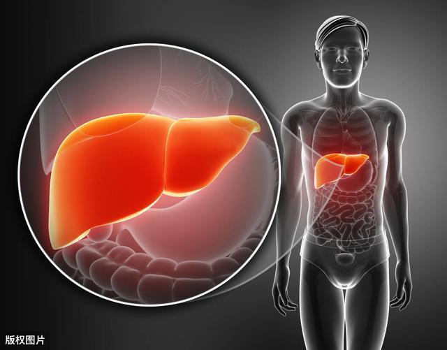 想要养好肝,这5个生活习惯不能少,小习惯却有大作用