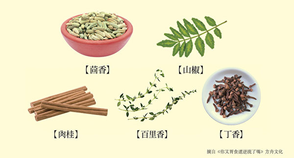 养肠胃食物九:用作肠胃药的辛香料、药草。(方舟文化提供)
