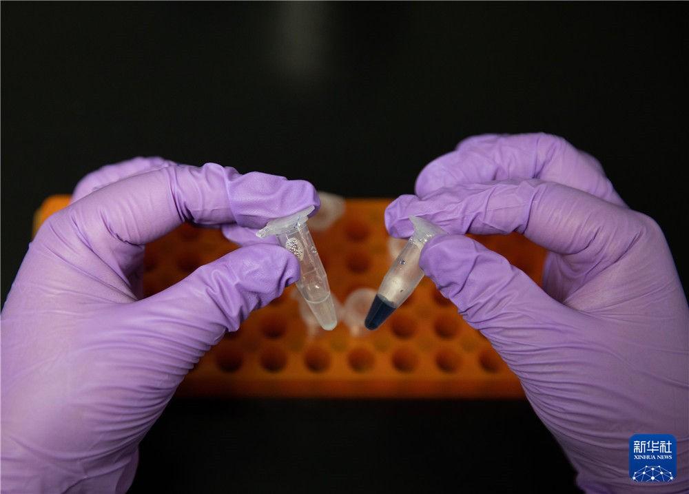 重大突破!中国首次在实验室实现人工合成淀粉_图1-1